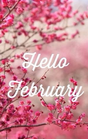 hello february, new month, birthday month and february 2016