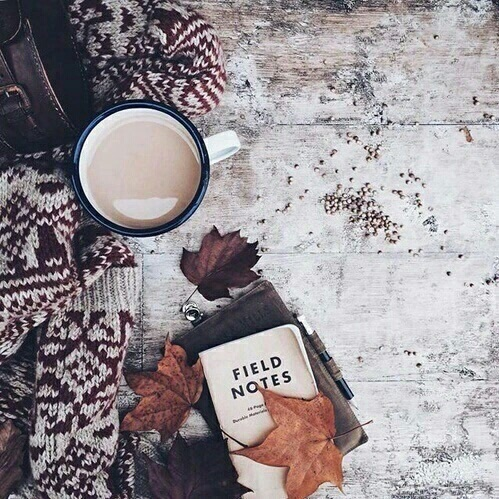 aesthetic, autumn, chilling, chilly, coffee - image ...