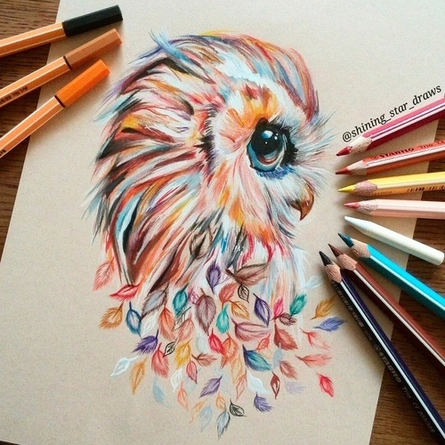 eagle creativity art drawing owl image 4144789 by